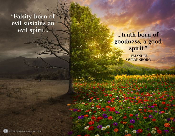 """""""Falsity born of evil sustains an evil spirit; truth born of goodness, a good spirit.""""  —Emanuel Swedenborg, Secrets of Heaven §9003  To learn more about this idea, check out our Swedenborg and Life episode, """"The Lies Evil Spirits Tell Us"""" here: https://www.youtube.com/watch?v=Qaqd9Fhsxpg&utm_content=buffer6c80a&utm_medium=social&utm_source=pinterest.com&utm_campaign=buffer"""