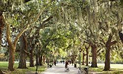 Forsyth Park - Savannah - Reviews of Forsyth Park - TripAdvisor