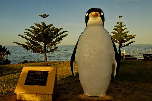 The Big Penguin in #Penguin! Article and photo by Carol Haberle for Think #Tasmania