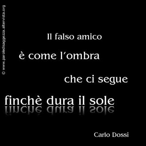 "Aforisma sull'Amicizia di Carlo Dossi: ""Il falso amico è come l'ombra che ci segue finchè dura il sole""....so veru true and well said about cool - cold...:)"