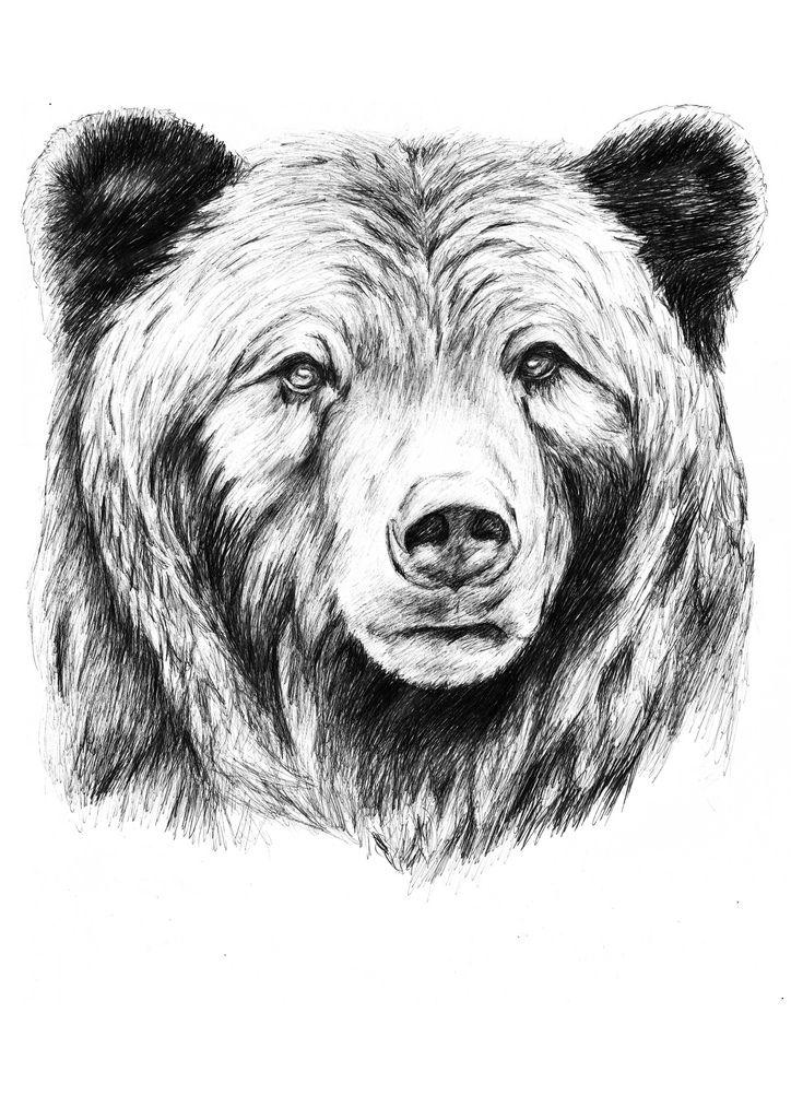 медведь тату картинки рисунки сети разнесли пух