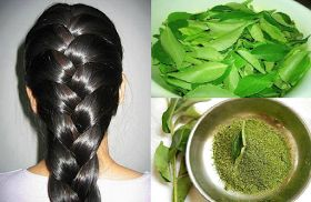 Secret to get long and strong hair in one month!