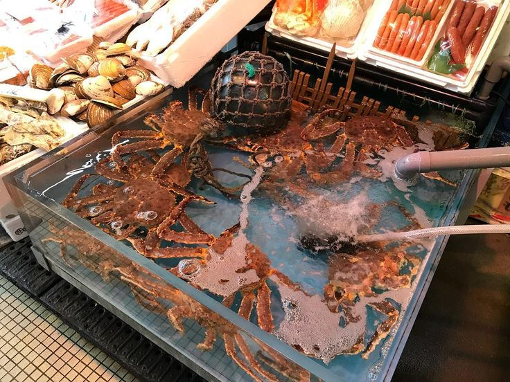 #freshcrab #crab #japancrab #seafood #japanesefood #foodpornjapan  #hakodate #函館 #函館朝市 #青春18きっぷ旅 #33日間行きあたりばったりの旅2017秋編 #秋の風景 #秋の紅葉  #travel #travelgram #travelblogger #hongkong #hkig #instagram #photos #beautifullandscape #redleaves #japan #hokkido #北海道 #道東 #itraveltheworldandthesevenseas