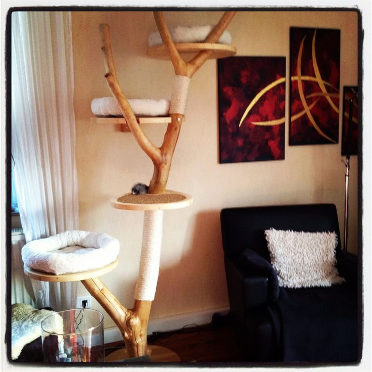 Diy Scratching Tree Love The Sisal Scratching