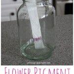 Flower Pigment Experiment