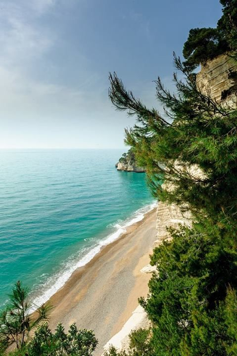 Have you ever been in Gargano? Have you ever admired its small secluded bays, nestled between spectacular sea stacks? A true paradise..take our word for it, or just get a load of this picture!  http://www.viaggiareinpuglia.it/dirter/PE9/24/en/Gargano