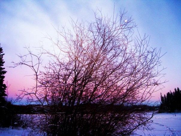 Winter At Dee Lake