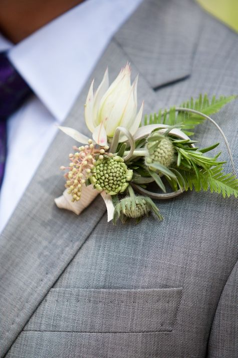 Protea with scabiosa buds, rosemary, umbrella fern boutonniere