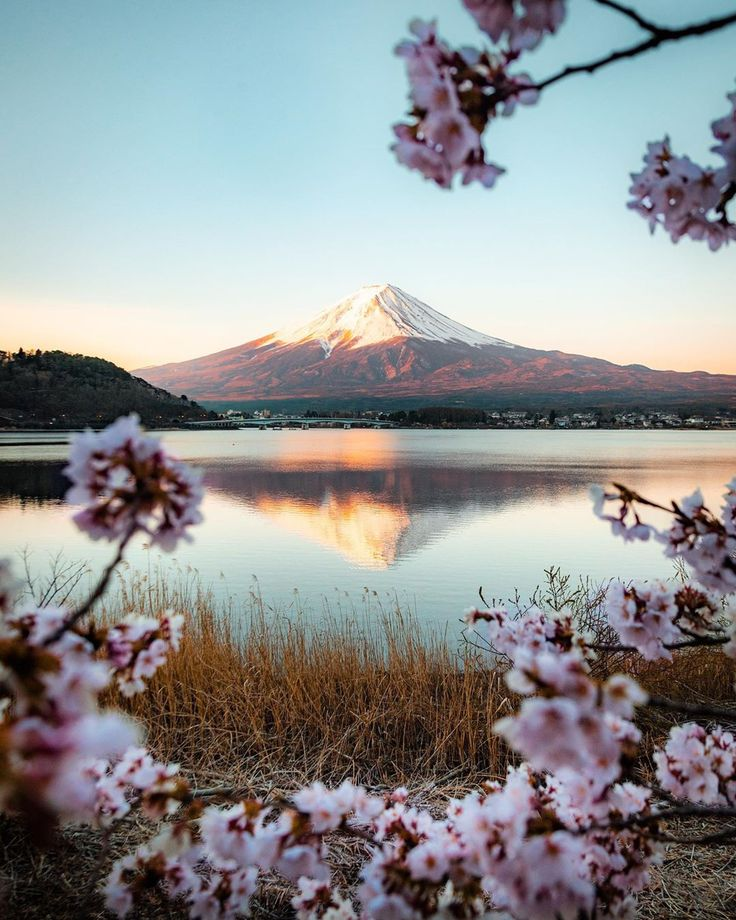 Mount Fuji is the tallest mountain of Japan 🌸 D…