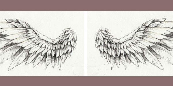 111 best wings images on pinterest feathers black art and dark. Black Bedroom Furniture Sets. Home Design Ideas