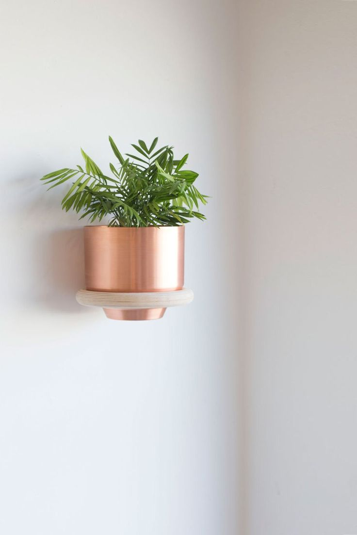 superb wall plant holders. Ring Wall Mount  Mounted PlantersPlant 427 best Plants Planters images on Pinterest