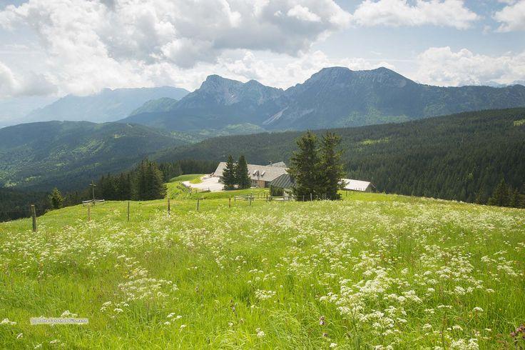 Die Sennerinnen auf der Stoißeralm auf dem Teisenberg Ein neuer BLOG ist online http://blog.berchtesgadener-land.com/2016/04/28/die-vier-sind-neugierig-auf-ihren-sommer-auf-dem-teisenberg/
