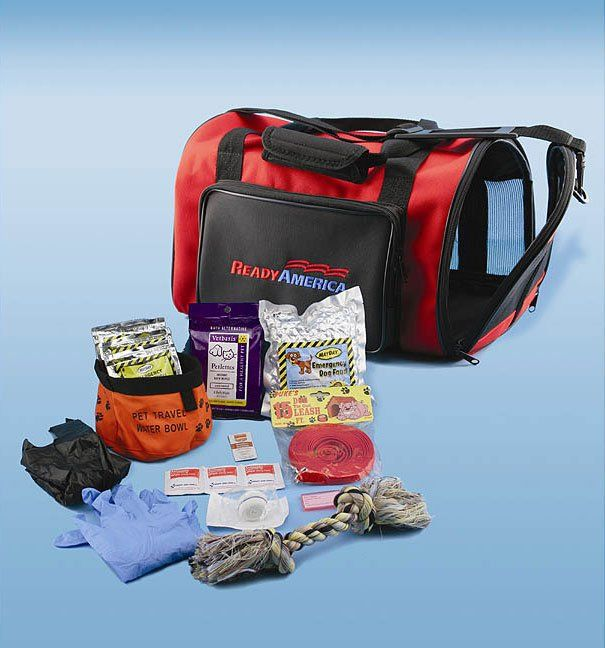 Everyone should have a pet emergency kit! Usually people forget to make one for their pets. They'll definitely need one too!!