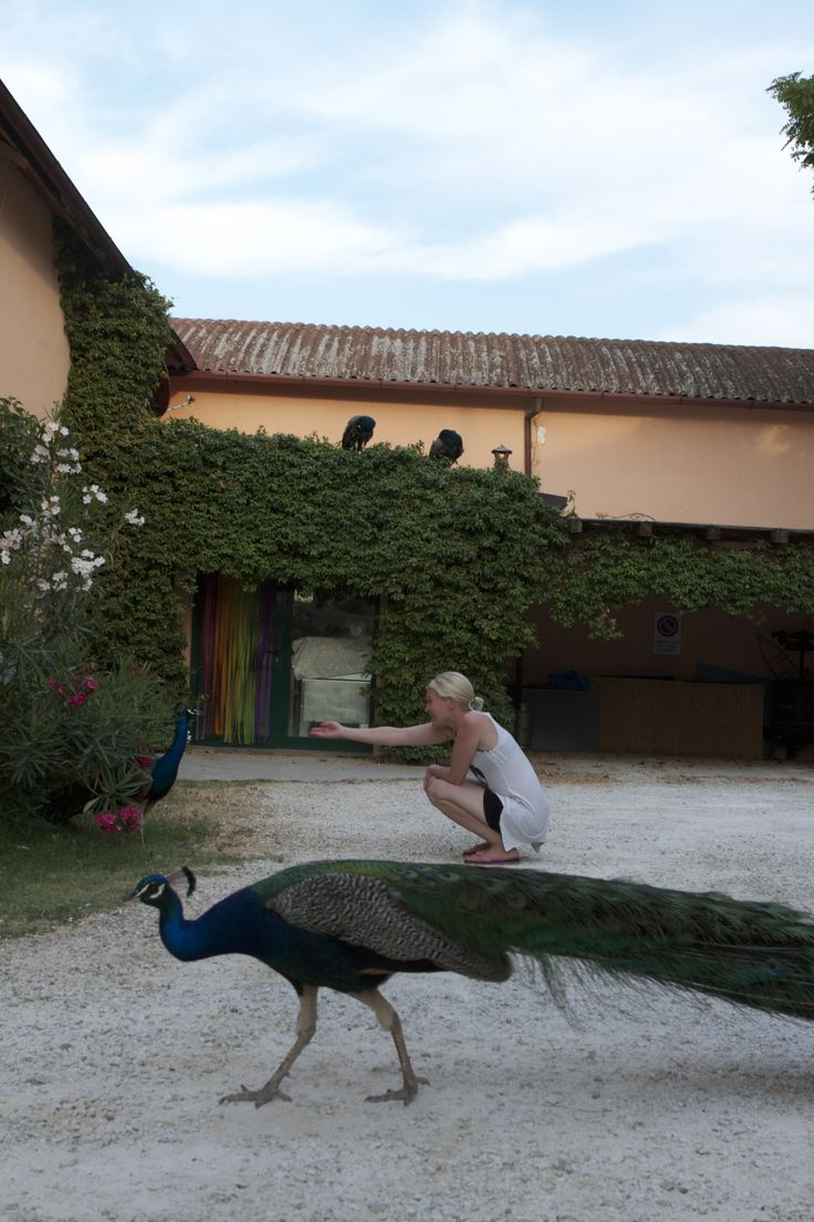 Agriturismo Trere, Faenza (2012)