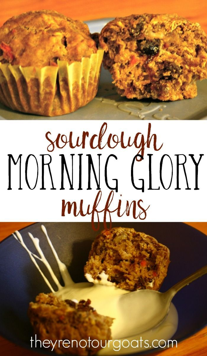 Sourdough Morning Glory Muffins- no refined sugar, veggies, fruit, and protein for breakfast, and fermented grains- it doesn't get much healthier or tastier than this!