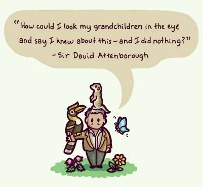 """How could I look my grandchildren in the eye and say I knew about this - and I did nothing?"" Thought provoking quote from David Attenborough #climatechange"