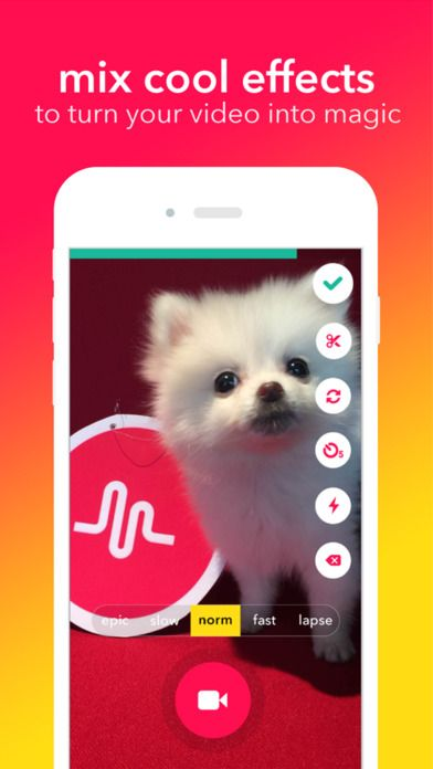 musical.ly - your video social community by musical.ly Inc.