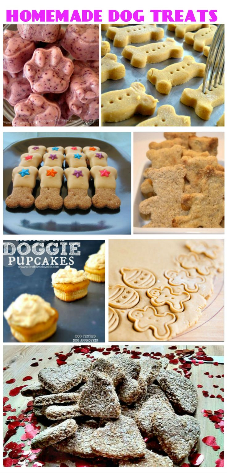 **Learn how to prepare** the 7 best homemade DOG TREAT recipes. Recipes links here: http://www.wannasharethis.com/the-7-best-homemade-dog-treat-recipes/
