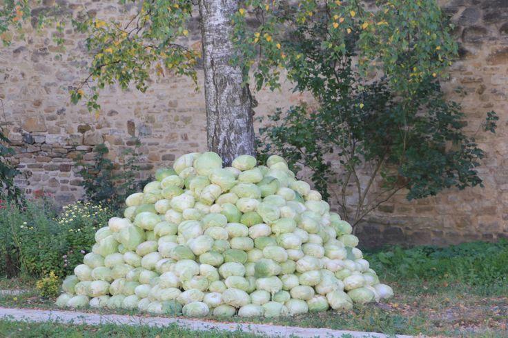 Nun's cabbage stash at Suceviţa