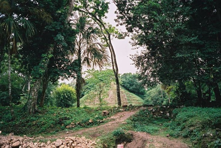 Lamanai is a Mesoamerican archaeological site, and was once a considerably sized city of the Maya civilization, located in the north of Belize