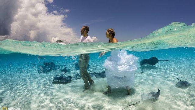 wowshareit.blogspot.com: National Geographic: Ο υπέροχος κόσμος μας σε 10 α...