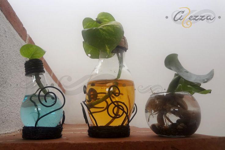 Focos Chicos y Grandes.  ¡Gracias por Reciclar ! #FoquitosEcológicos
