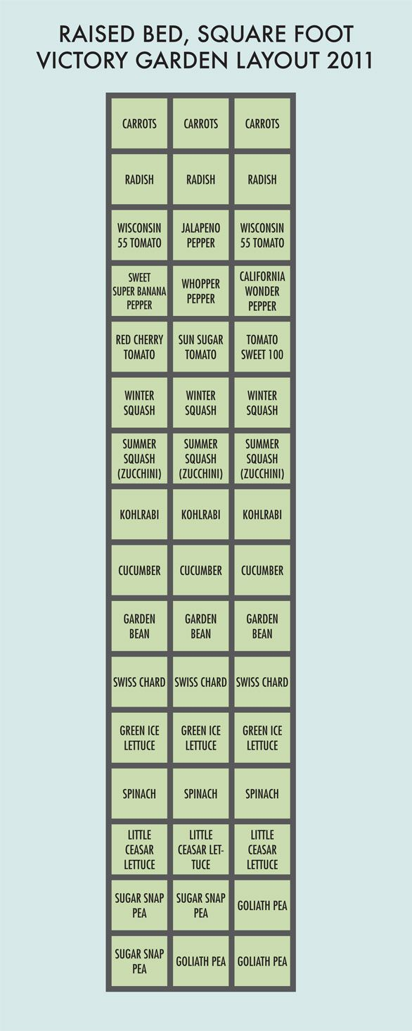 Side of House Green House Garden Layout - Best 25+ Victory Garden Ideas On Pinterest Victory Definition