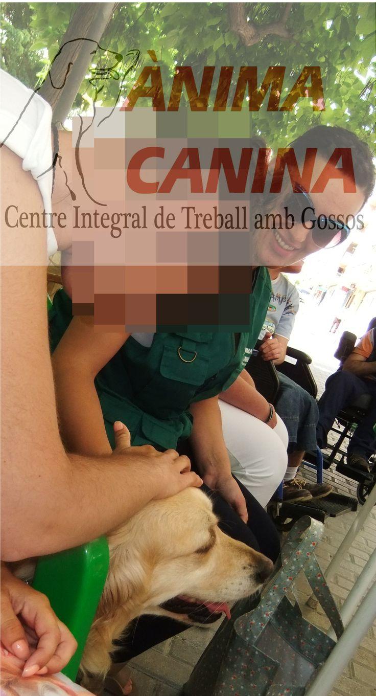 Paseo con los usuarios del Centro de discapacitados de Ontinyent