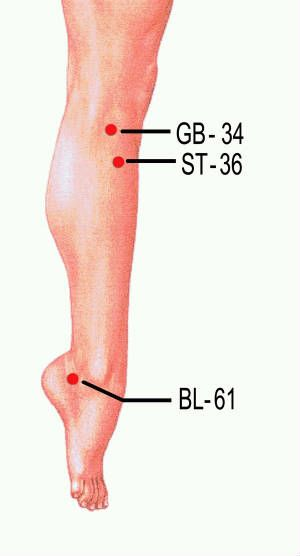 Accupressure Points - 34 - Gallbladder 36 - Stomach 61 - Bladder