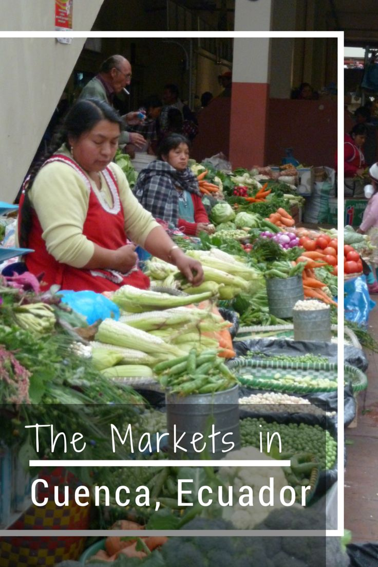 Come along with me as I explore the markets in Cuenca, Ecuador. From fruits and vegetables to chocolate and flowers.