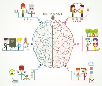 Neurodydaktyka czyli edukacja przyjazna mózgowi