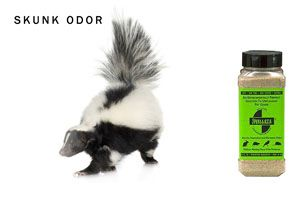 Smelleze® Eco Skunk Spray Deodorizing Powder will effectively rid dog skunk smell & remove skunk odor without masking with fragrances.  Smelleze® makes it simple to get rid of skunk smell safely. Skunk removal has never been easier or more effective than with Smelleze® skunk off.