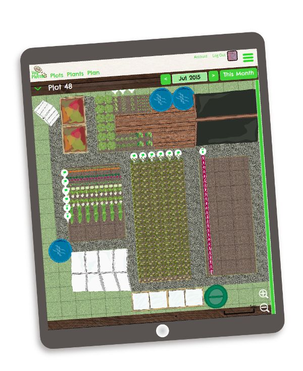 Whether you are a beginner or seasoned fruit and vegetable grower, have a small kitchen garden or run multiple full size allotment plots.  VegPlotter's online garden planning software will help you get on top of it and ensure you have a productive and stress free vegetable garden / allotment plot.