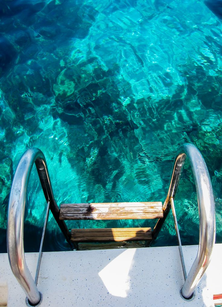 Dive in!  Explore the crystal clear waters of Koh Tao,Thailand.