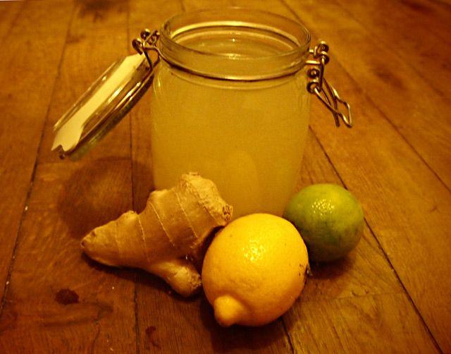 Happy Plantes M 233 Dicinales Citron Aide Au Gingembre Le