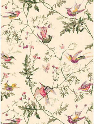 Cole & Son Hummingbirds Wallpaper on shopstyle.com.au