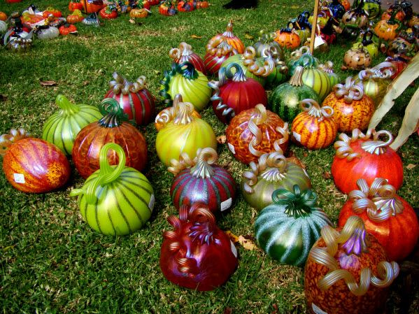 Featuring 8,000 hand-blown glass pumpkins crafted by more than 30 artisans, The Great Glass Pumpkin Patch in Palo Alto, California recently held its 17th annual fall event and sale. These glass pumpkins are perfect for Halloween or Thanksgiving (yet beautiful ...