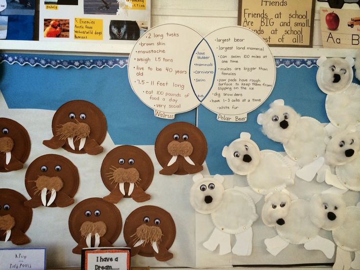 Cute Arctic Animals Bulletin Board