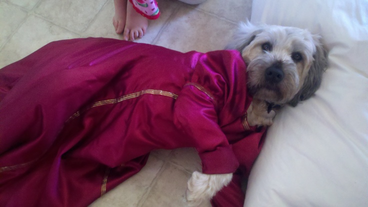 Gracie LOVES to dress up -- this time as a Renaissance princess!