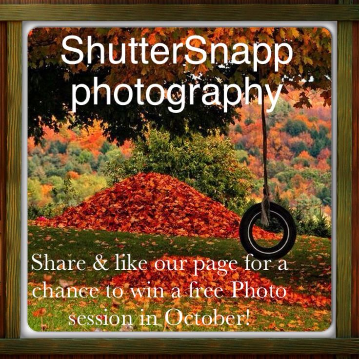 Check us out on Facebook & share our page for a chance to win a free photo session here in beautiful NS in October 2014! Draw will take place sept 30th!