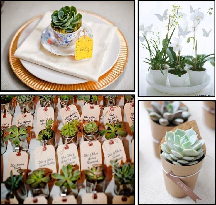 bedankje bruiloft plantje - Google zoeken