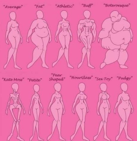 Female Body Type Chart (start at the upper right and read right to left) :)