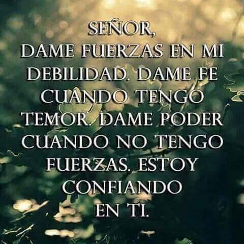Señor dame fuerzas en mi debilidad. Dame fe cuando tengo temor. Dame poder cuando no tengo fuerzas. Estoy confiando en ti.