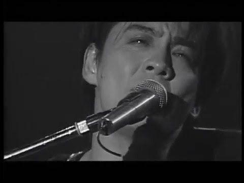 氷室京介/DEAR ALGERNON