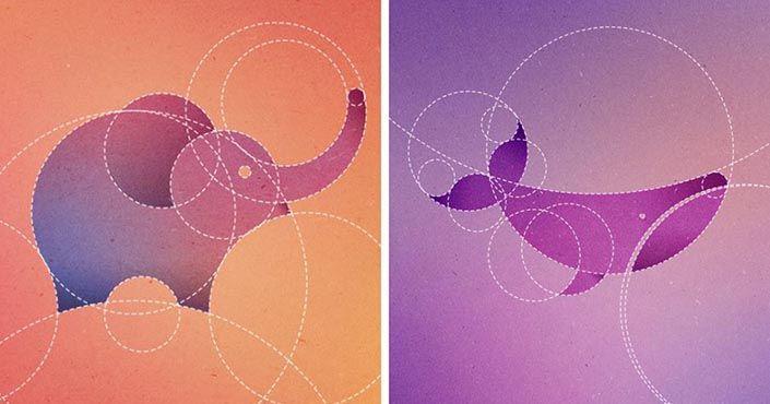 Grafická dizajnérka Dorota Pankowska - Dori nakreslila 13 zvierat, každé pomocou 13 dokonalých kružníc. Grafický dizajn, nápady, inšpirácie pomocou kružníc