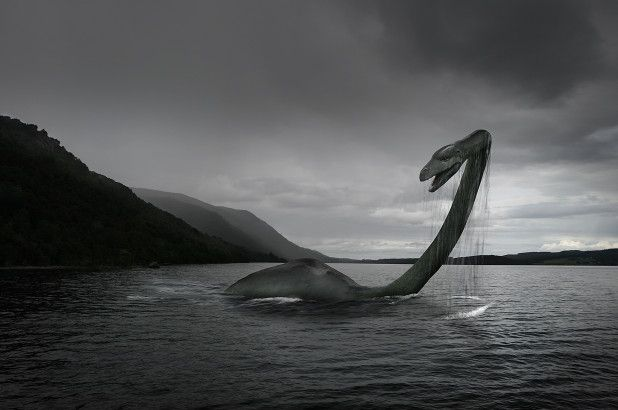 The Loch Ness Monster Loch Ness Monster Lake Monsters Monster Photos