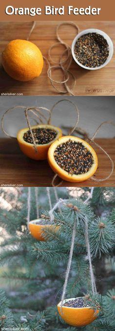 Winter Solstice // Yule // Christmas | Orange Bird Feeder