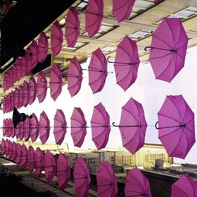 [Foto propia]  El pasado 19 de Octubre fue el Día Contra el Cáncer de Mama, a raíz de este simbólico día, la calle de la Oliva en Pontevedra decidió vestir su cielo con paraguas de color rosa.  Ese mismo día, las redes sociales se llenaron de esta fotografía. Un acto precioso para un día tan importante como ese. Esta foto y lo que simboliza nos pareció perfecta para que fuese nuestra FOTO DE LA SEMANA. ¿Lo habéis visto? ¿Os ha gustado?  Cotillead y dejadnos vuestro comentario!! ⬇⬇⬇⬇⬇…