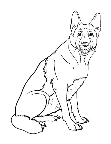321 best Coloring Pages at ColoringCafe.com images on ...