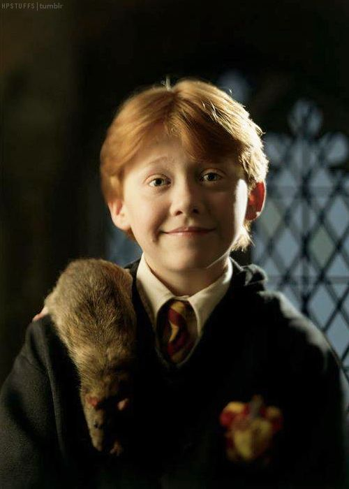 Harry Potter: Ronald Weasley :)                                                                                                                                                     More